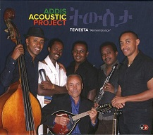 Addis Acoustic Project.jpg