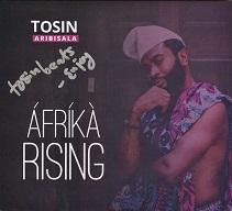 Tosin Aribisala  AFRIKA RISING.jpg